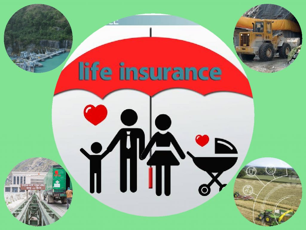 Life Insurers made investments of Rs.342 billion, 80 pc in FD