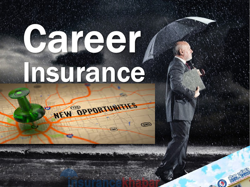 Insurance Industry employs 11 thousand workforce